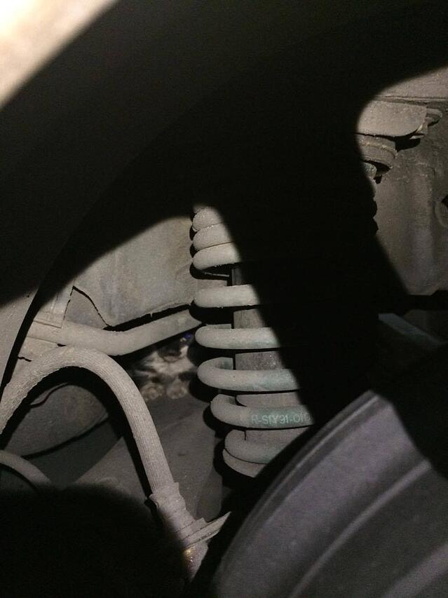 cat-trapped-in-car