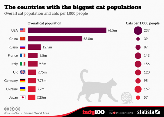 cat-obsessed-countries.png