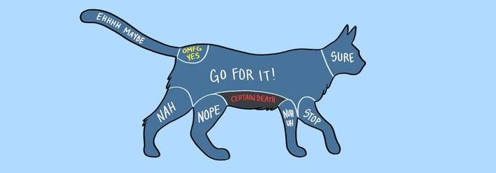 how-to-pet-a-cat.jpg