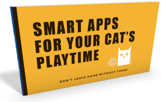 smart-apps-for-your-cat-playtime-image.png